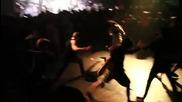 Whitechapel - Breeding Violence (2011)