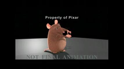 Мишка Прави Фокуси