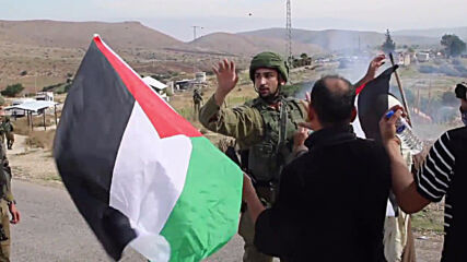 State of Palestine: Dozens of anti-annexation protesters injured as Israeli forces use tear gas