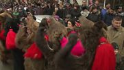 Roarsome! Romanians parade in bear skins to bring new year's luck