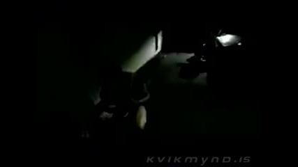 xxx Rottweiler Hundar - Bent nalgast