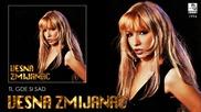 Vesna Zmijanac - Ti, gde si sad - (Audio 1994)