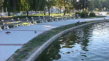 """Самоков - Крайречен парк """" КРАЙИСКЪРЕЦ """" 038"""