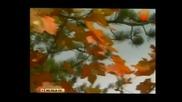 Георги Христов - Синева Hq