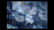 Ernesto Cortazar - When The Soul Cries