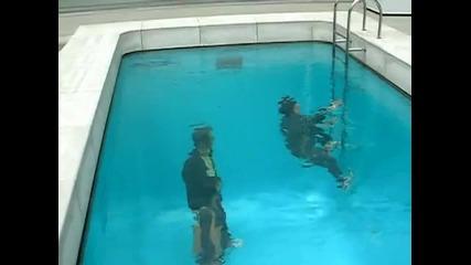 Фалшив басейн!