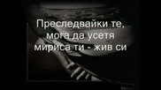 Evanescence - Haunted (BG превод)