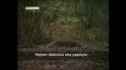 Лов на Прасета - 5
