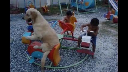 Куче си играе на въртележка с деца