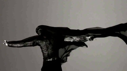 Lady Gaga - Scheibe ( fan video )