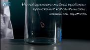 Горение Ацетона На Проволоке - химический Рѕр