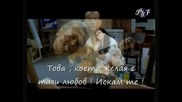 Mариана Попова & Oрлин Горанов Превод Lejos