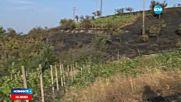 Голям пожар в Благоевградско