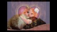 Wosh Mc - Песен за любовта