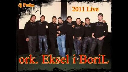 ork.eksel i Boril - kuchek 2011