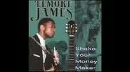 Elmore James - Shake Your Moneymaker