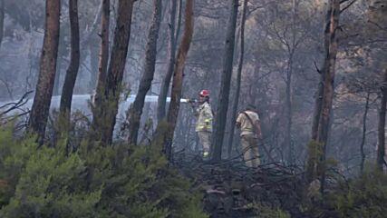 Turkey: Firefighters battle Marmaris forest fire amid scorching heatwave