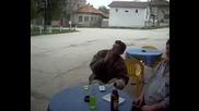 Бачето И Буцата