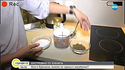 ЕКСТРЕМНО ОТ КУХНЯТА: Кремена, която се храни с насекоми