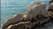Vedran Ivcic - ludo more
