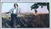 Dann Rogers -looks Like Love Again 1979