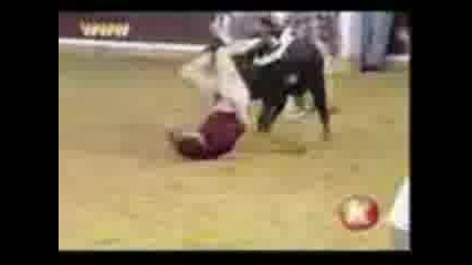 перверзен бик