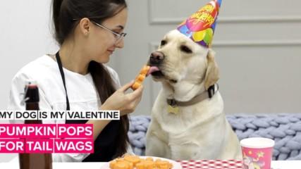 С кучето на празника на любовта