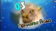 10 от най-странните животни на планетата