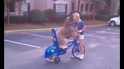 Куче кара колело Невероятно !!!