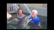 Съперничество с делфин
