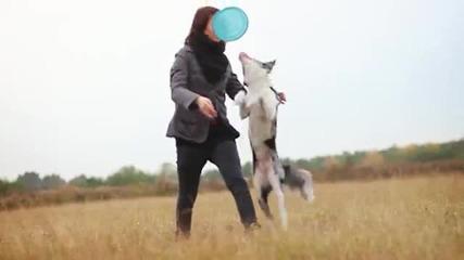 Куче с невероятни трикове!