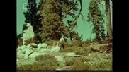 Ласи - Бг Аудио, Епизод (1965) - Градът, който отказва да загине