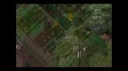 Ultima Online - Nelderim
