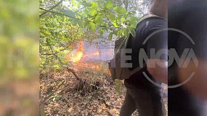 """От """"Моята новина"""": Пожарът"""