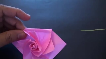 роза - Origami_daily_-_68_beautiful_ros