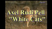 Axel Rudi Pell - White Cats