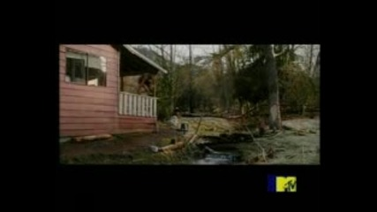 Twilight - New Moon Trailer at Mtv Awards