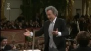 Johann Strauss Vater - Radetzky Marsch Vienna 2011 New Year Concert