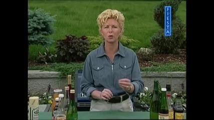 Скара за приятели - Печено месо с кайсиев сос