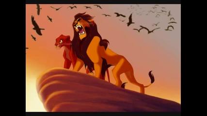 Цар Лъв-историята на Ахади