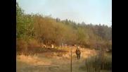 Пожар В Село Елхово