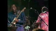 B.b. King Buddy Guy - I Can't Quit You Baby