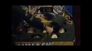 Скуби Ду 2 Чудовища На Свобода на български част 2 - ва / Добро Качество /
