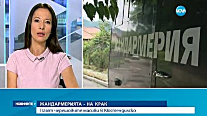 Жандармерия пази черешите в Кюстендилско