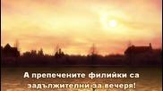[ths] Dantalian no Shoka 03 bg sub [480p]