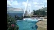 Honeymoons Top 10 Caribbean Islands,  Pt. 2