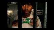 Най - Строгите Американски Затвори ( Lockdown Surviving Stateville ) Част 2