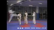 Taekwon - do - Jilei