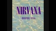 Nirvana - D-7