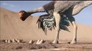 Bbc Планетата на динозаврите 6 епизод - 2/2